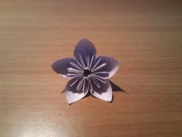 Paper flower origami by Acu91