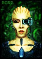 borg by gugo78