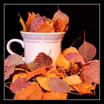 Autumn is My Cuppa Tea by TeaPhotography