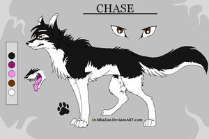 Chase Reference by kibaandme