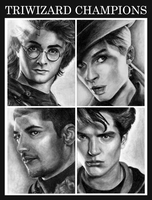 triwizard champions by HogwartsArt