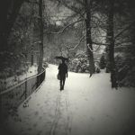 Gone in the snow.. by lostknightkg