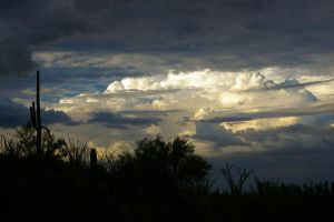 The Structure of Clouds by PatGoltz