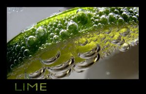 Lime by Nela1812