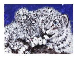 Snow Leopards by caitiedidd