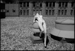 Rooftop ..cont by JohnPeri