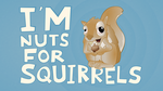 Nuts for Squirrels by Klowner
