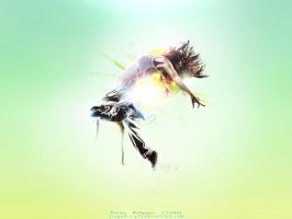 Flying - wallpaper by avogadro by avogadro-gfx