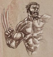 Wolverine warm up by dichiara