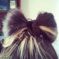 Bow Bun by Wingreader