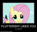 Fluttershy Likes You by Macgrubor