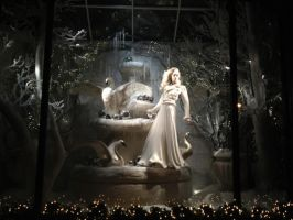 Ralph Lauren Window Display by Meddling-With-Nature