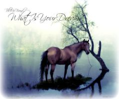 Tell Me Friend...What Is Your Dream? by ArielKJ