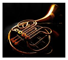 The Horn Concerto by Spellings