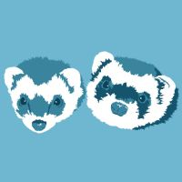 Ferret Portraits In Blue by Spirallee