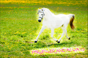 Forever and Always by EverlastingRide
