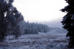 Winterlandschaft by Noirerora