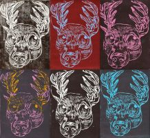 For sale - Stag prints $10 (+postage) by ClaraBacou