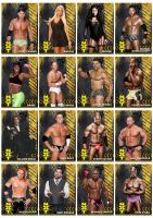 WWE NXT Season 1-5 Roster Promos Part 2 by Chirantha