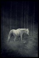 deardeparted commission .. by inPrint