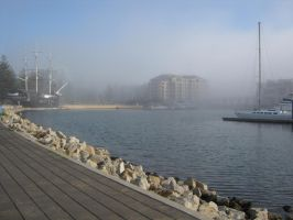 Fine Foggy Afternoon by janinesmith54