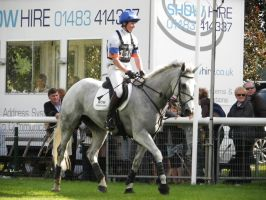 Grey horse trotting_stock by popui