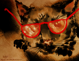 Just random cat in red glasses by AtomicKitten13
