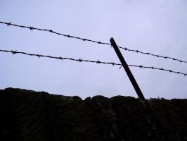 barbed wire fence by cottoncandycookie
