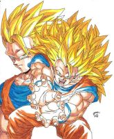 Dragonball Z - Goku SS3 Colour by TriiGuN