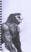 Wolverine by Flooboo