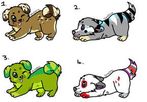 Puppy Adoptables [CLOSED] by mossyyadopts