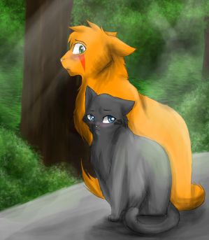Fireheart and Cinderpelt by RiverSpirit456
