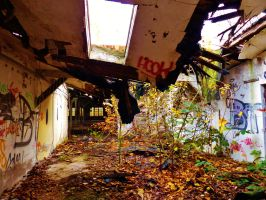 abandoned furniture plants V by tussy1483