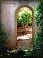 All Objects Look Well Through an Arch by GlassHouse-1