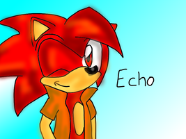 .:Gift maybe idk:.Echo the hedgehog by amyainrose