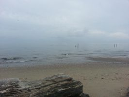 Foggy Beach by GUDRUN355