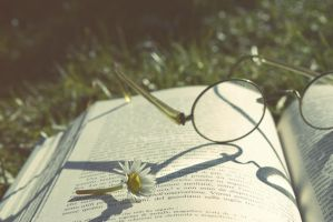 069. Stop and read by AlicevsAlice