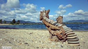 Stone and driftwood art in hungary by tamas kanya by tom-tom1969