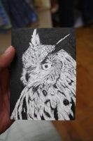 Illusion: Owl by monku696