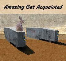 Amazing Get Acquainted by derkert