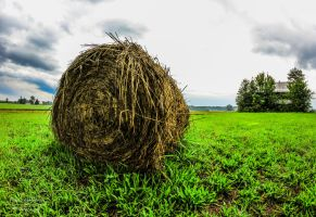 HDR Hay Bale II by SparkVillage