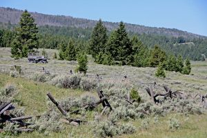 Wagon on Red Rock Lakes Refuge Hillside by Kippenwolf