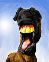 Horsey laugh by alexandrabirchmore