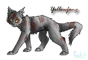 -:Yellowfang:- by Finchwing