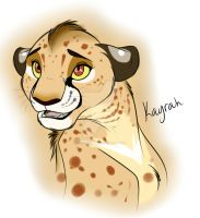 Cheetah Oc by IsharaHeart