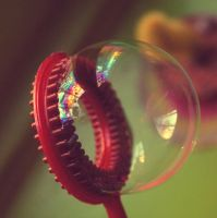 soap bubble by Zahar-Ino