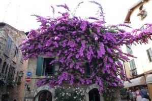 A beautiful house (Sirmione) by J-Moriarty