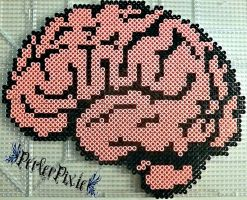 Brains by PerlerPixie