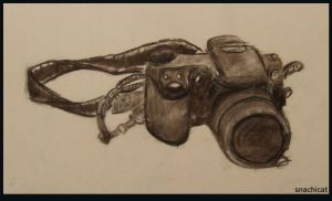 Charcoal Camera by snachicat
