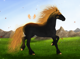 LE - Friesian import SOLD by Minthiy